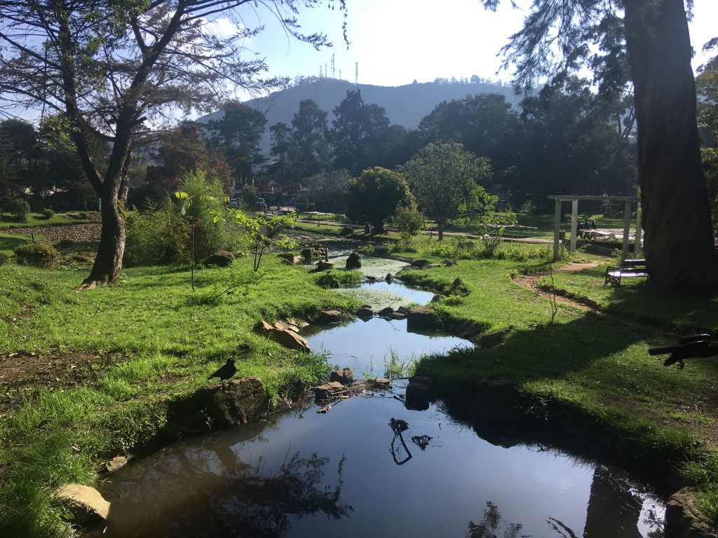 Victoria-Park-Nuwara-Eliya