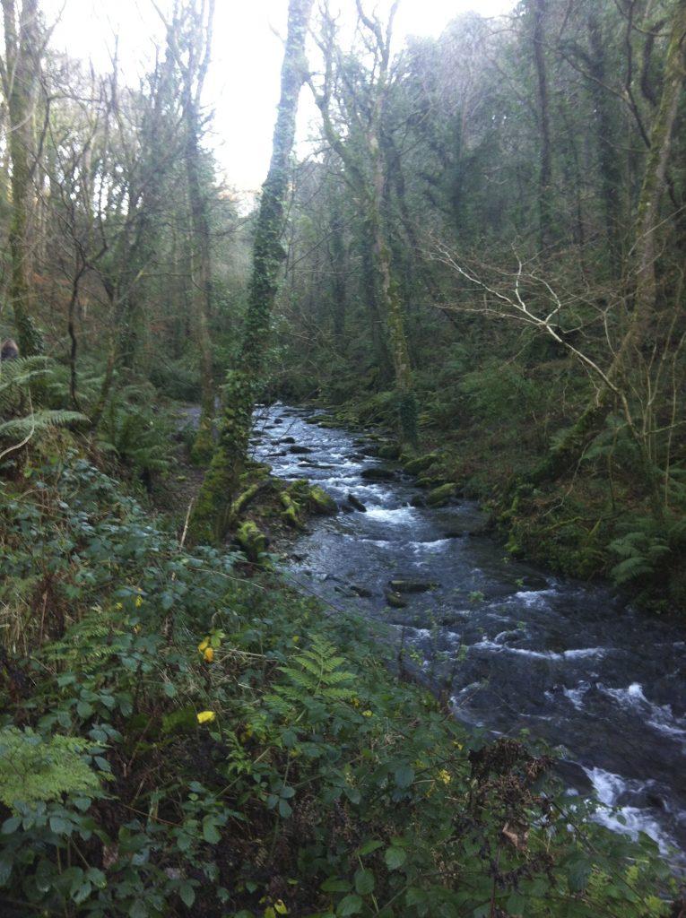 Camino a la cascada de Saint Nectan's Glen
